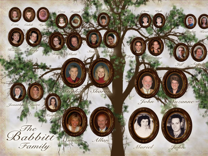 Из чего сделать семейное древо своими руками фото