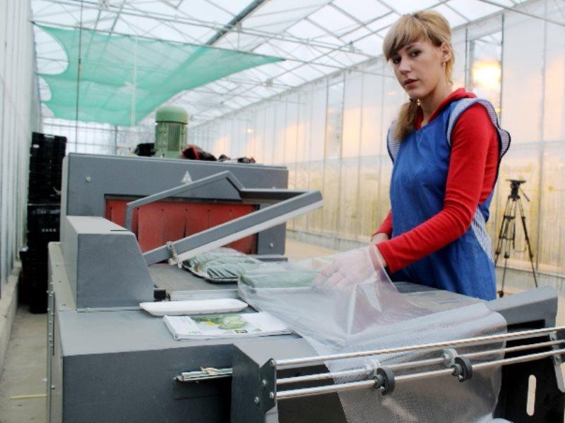 Работа в петроградском районе спб неполный рабочий день