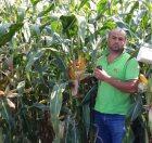 Биологизация сельскохозяйственного производства